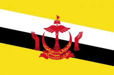 Flag Brunei Placeholder 01
